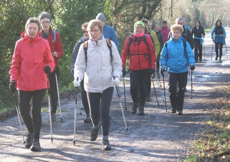 Regroupements NMA : La marche nordique et les jeunes pousses à l'honneur
